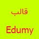 قالب Edumy | قالب حرفه ای وردپرس آموزش آنلاین ایدامی