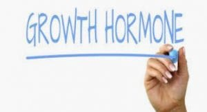 پاورپوینت هورمون رشد
