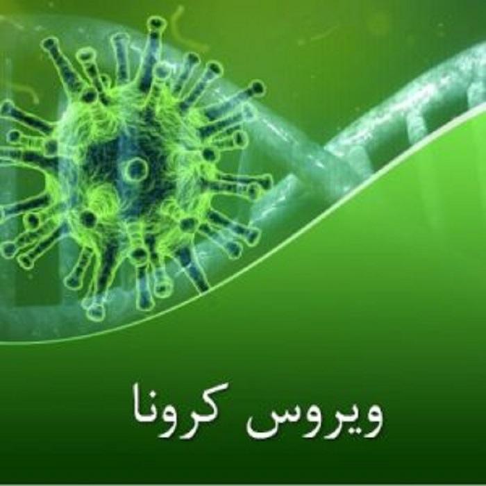 پاورپوینت در مورد ویروس کرونا