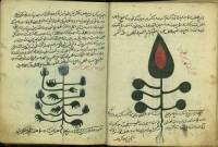 کتاب مرجانه شاهی(گیاهان جادویی)